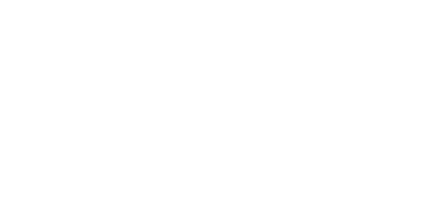 Dejuco is a professional breeding of German Shepherds 100% line. Our dogs come from the best lines of the Czech Republic and Germany.